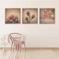 Blushing Brides | Set of 3 Art Prints | Framed or Unframed