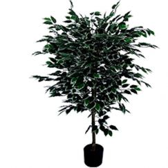 Bushy Artificial Ficus Tree | 1.2m