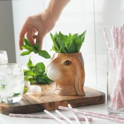 Ceramic Planter   Bunny   White Moose