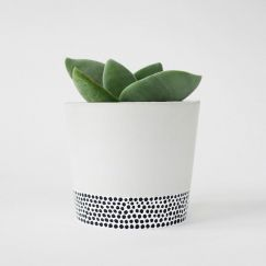 Concrete Planter | Tiny Dots | by Coral and Herb