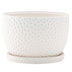 Decorative Plant Pot by Angus & Celeste | Embossed