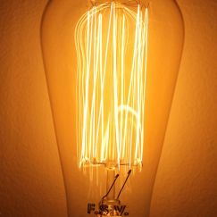 Edison Light Bulb | Squirrel Cage Filament