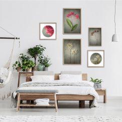 Foraged Gallery Wall | Set of 5 Art prints | Framed or Unframed