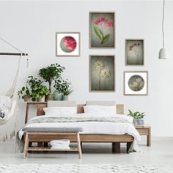 Foraged Gallery Wall | Set of 5 Art prints | Unframed
