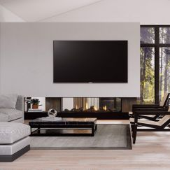 Frameless Gas Fireplaces | DS Series | DS1650 Double Sided