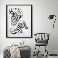 """Irreplaceable "" Zebra 