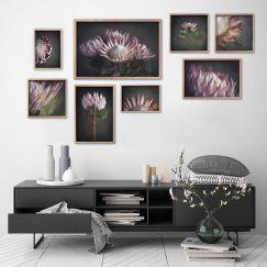 King on Gray Gallery Wall | Set of 8 Art prints | Framed or Unframed