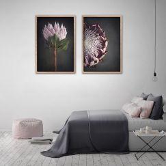 King on Gray | Set of 2 Art Prints | Framed or Unframed