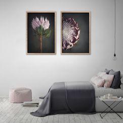 King on Gray   Set of 2 Art Prints   Unframed