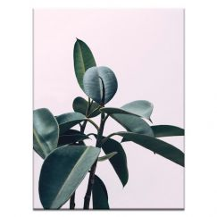 Leafy Pink | Prints and Canvas | Photographers Lane