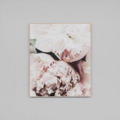 Light Bloom 2 | Photographic Canvas Print