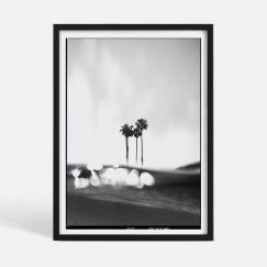 Lost In The Tropics | Limited Edition Print | Framed or Unframed | by Blacklist