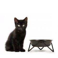 MEOW | Cat Bowl | Black on Black