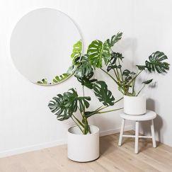 Modern Bright White Circular Round Mirror