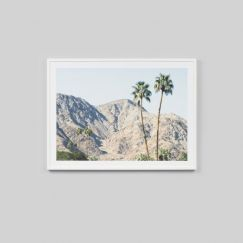Palm Hills | Framed Photographic Print