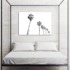 Palm Promenade | Canvas Print By United Interiors