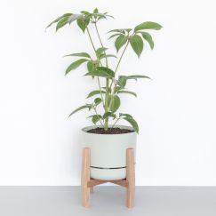 Plant Stand   Short   Jemmervale Designs