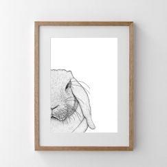 Rebekah the Rabbit   Print