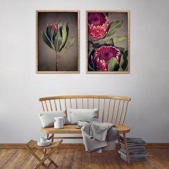 Red Protea | Set of 2 Art prints | Framed or Unframed