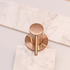 Round Champagne Wall Mixer by Meir