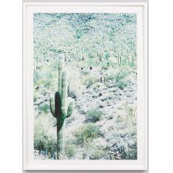 Saguaro | Framed Photographic Print