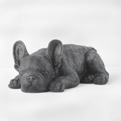 Sleeping Frenchie | Black