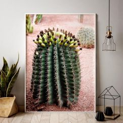 Spikey Spring | Posters | Unframed | 2 sizes