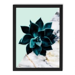 Succulent Series 1 | Limited Edition Unframed Print | by Arti Shah