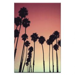 Tropical Palms | Prints and Canvas by Photographers Lane