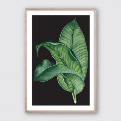 Tropical Spray #3 | Framed Giclee Art Print by Wall Style