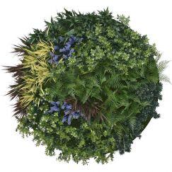 UV Lavender Fields Green Wall Disc | Black | 100cm