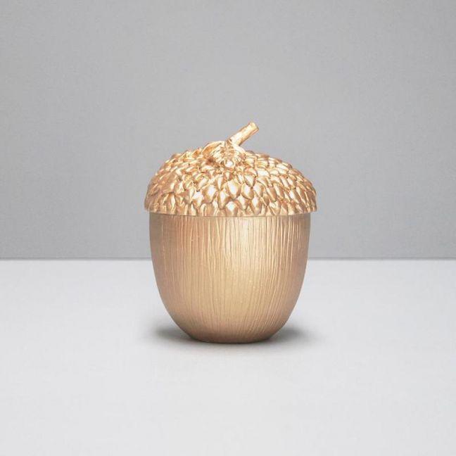 Acorn Secret Box | Gold