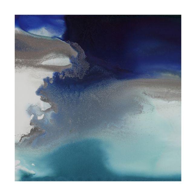 Aquatica II   Canvas Print
