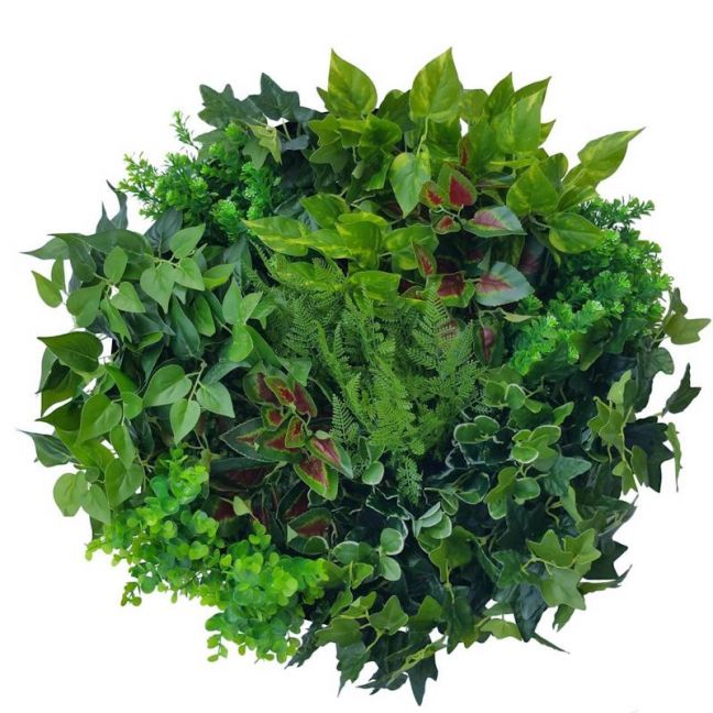 Artificial Green Wall Disk Art | 60cm Mixed Fern & Ivy
