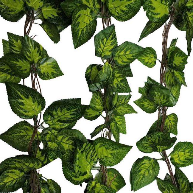 Artificial Pothos / Ivy Hanging Vines 260cm Each (5 pack)