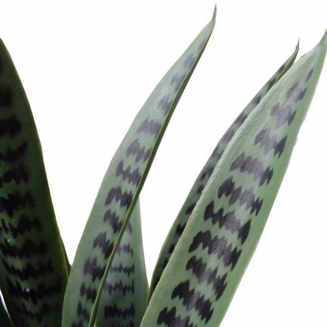Artificial Snake Plant UV Resistant 60cm