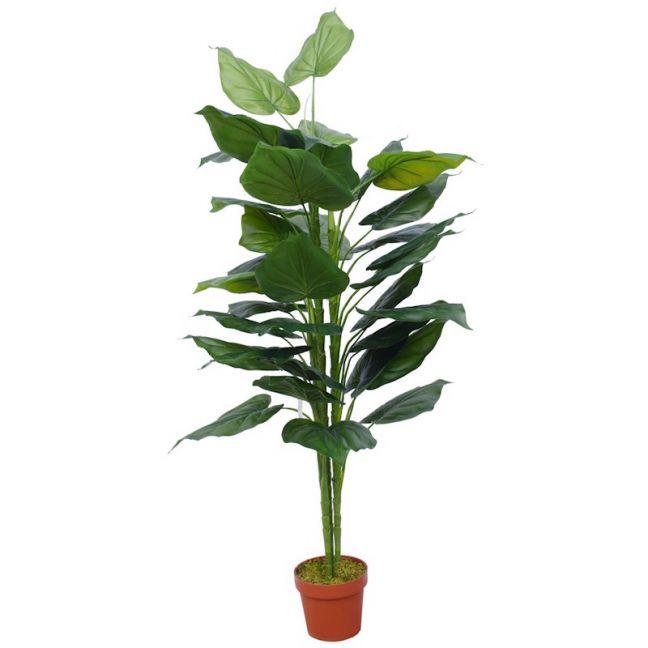 Artificial Taro Plant   150cm