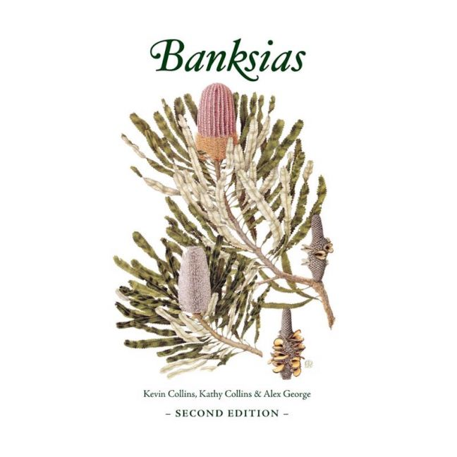 Banksias Second Edition   Coffee Table Book