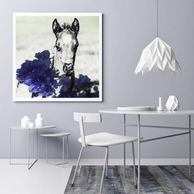 Blue Velvet | Photographic Art Print |Black Colt Photography