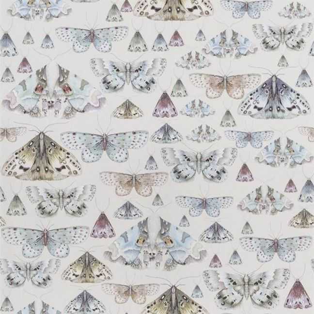 Butterfly Issoria   Wallpaper   Various Colours
