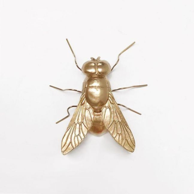 Buzz the Fly | Gold | White Moose