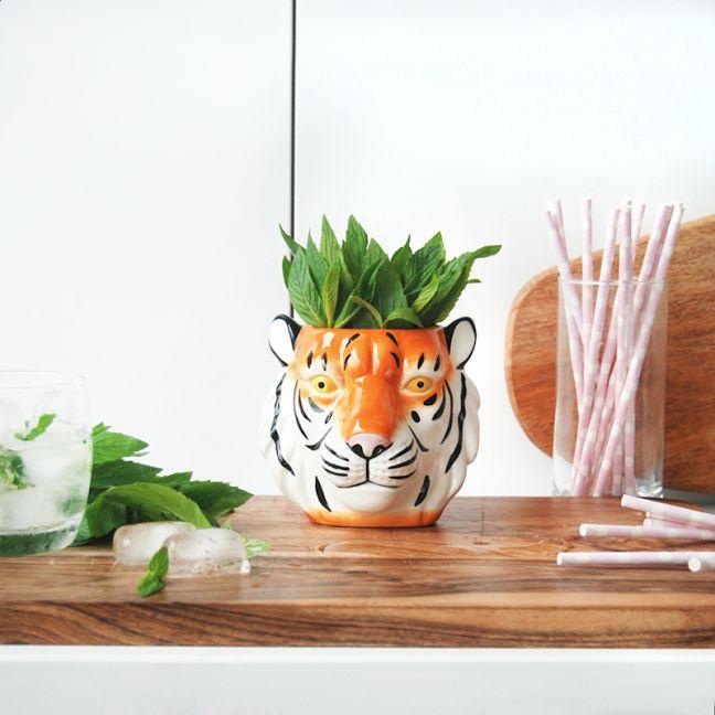 Ceramic Planter   Tiger   White Moose