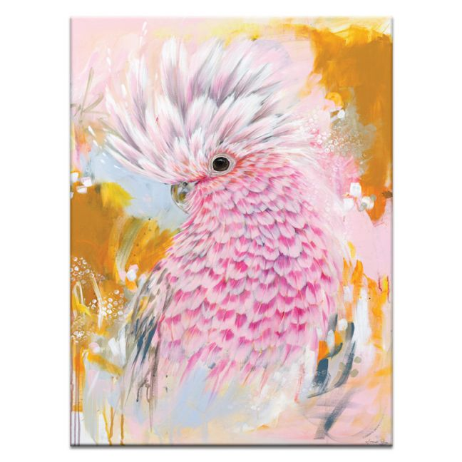 Charlie The Galah   Amanda Skye-Mulder   Canvas or Print by Artist Lane