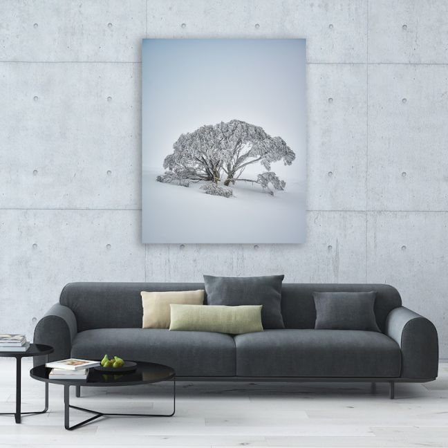 Chilled | Canvas Print by Scott Leggo