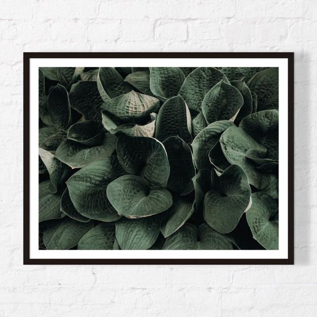 Cluster   Framed Print   Artefocus
