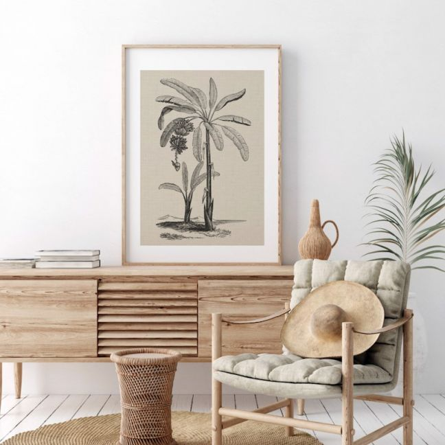 Coastal Palm Charcoal – Type 1 | Print | Stretched Canvas or Printed Panel
