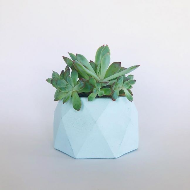 Concrete Planter | Jewel - Mint | by Coral and Herb