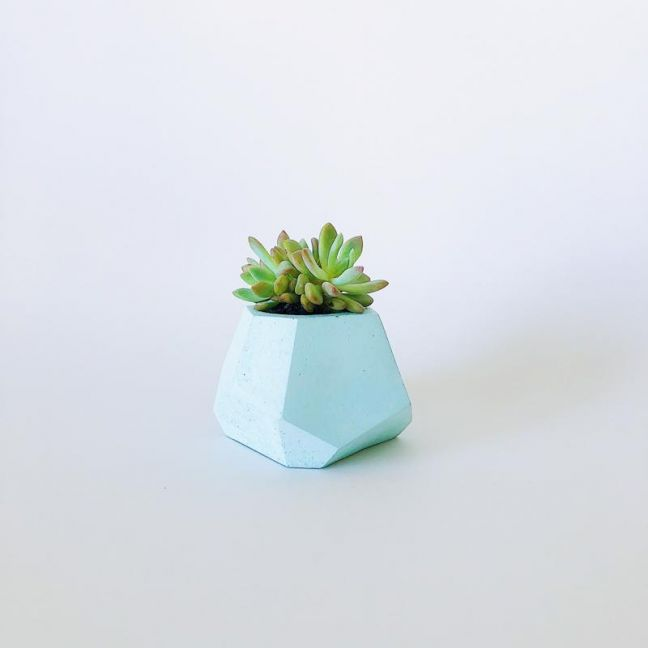 Concrete Planter | Pebbles | Pastel Mint | by Coral and Herb