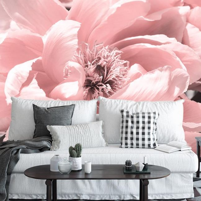 Coral Peony | Full Wall Mural