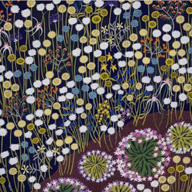Desert Bloom | Stretched Canvas Print
